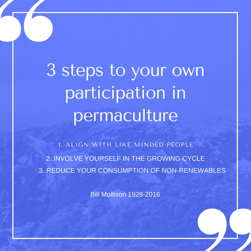 3-steps-to-our-own-participation